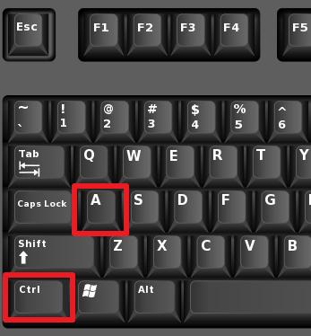 комбинация клавиш CTRL+A