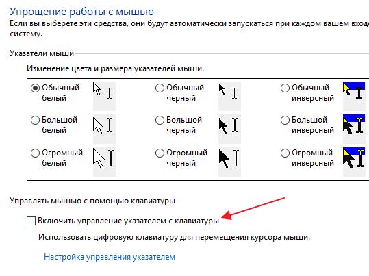 опция Включить управление указателем с клавиатуры