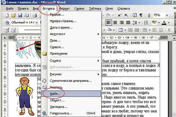 меню Вставка – Файл