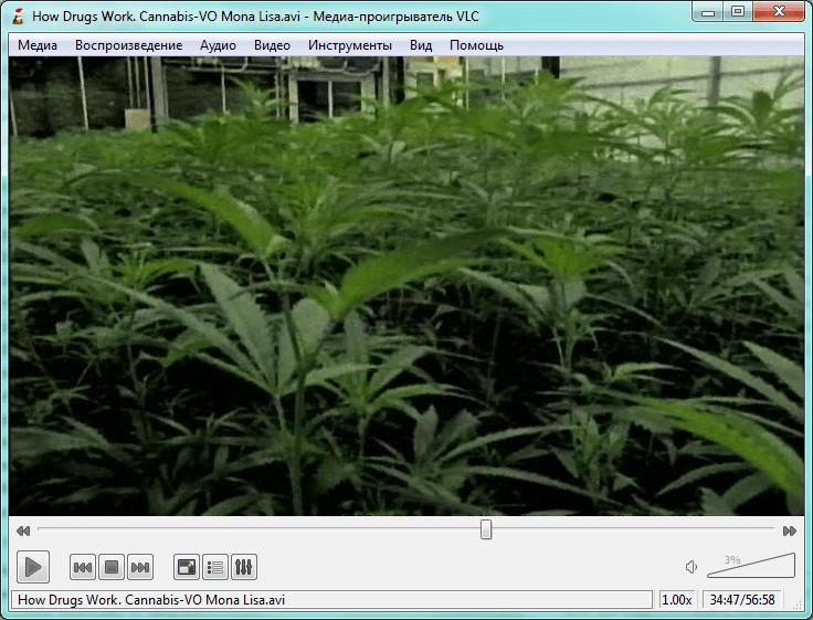 Программы для скачивания файлов VLC media player